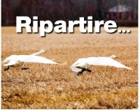 RIPARTIRE200