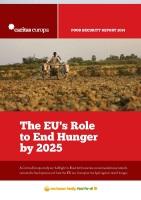 Caritas Europa - copertina Rapporto 2014