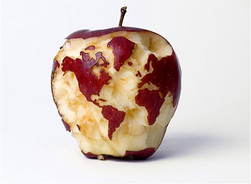 terra-mela